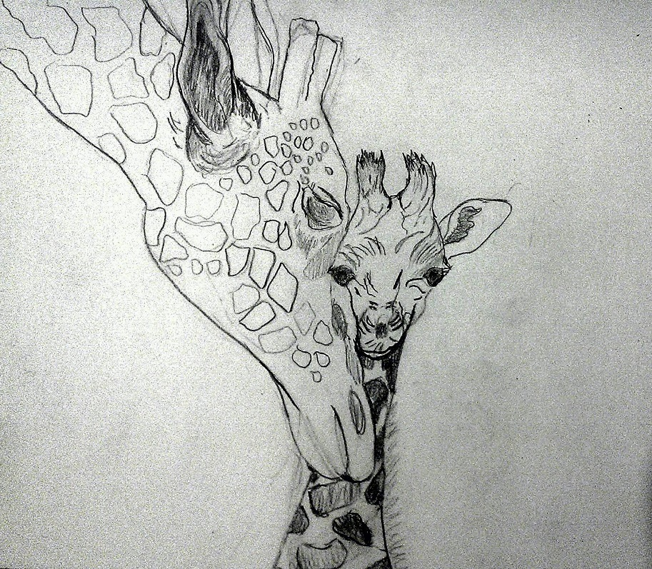 Sketch of mom and baby giraffe.