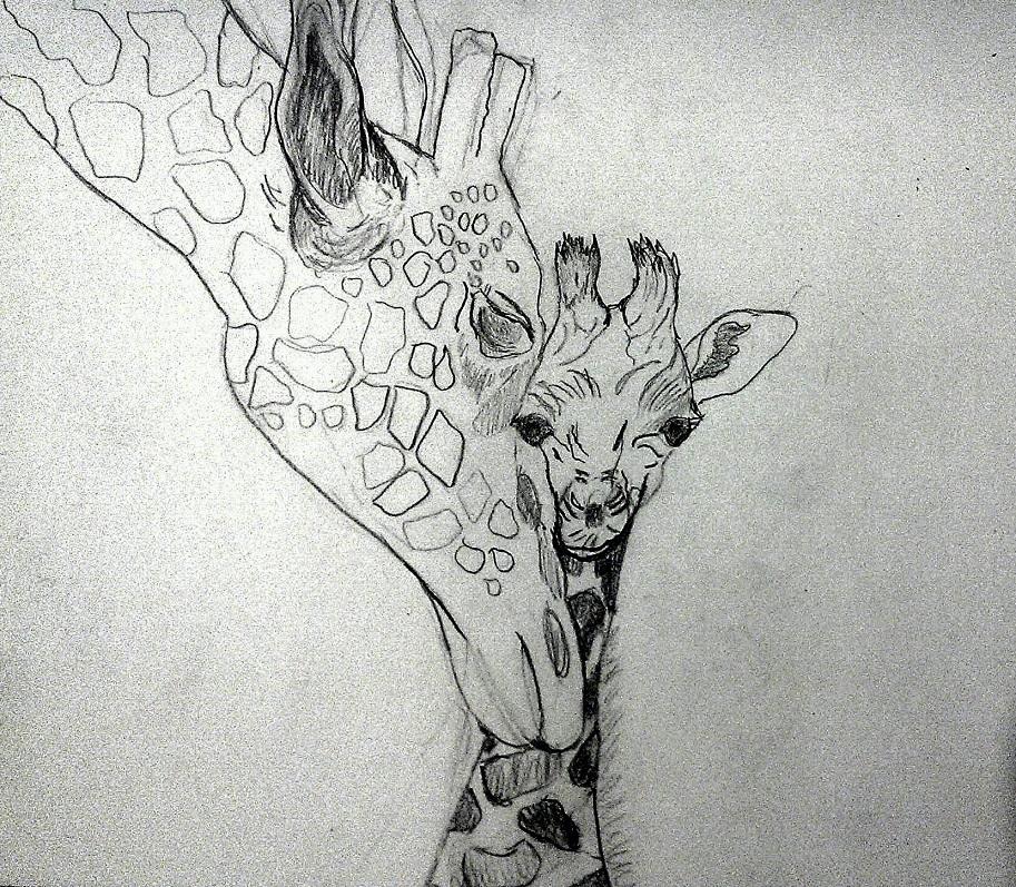 Sketch of mom and baby giraffe.