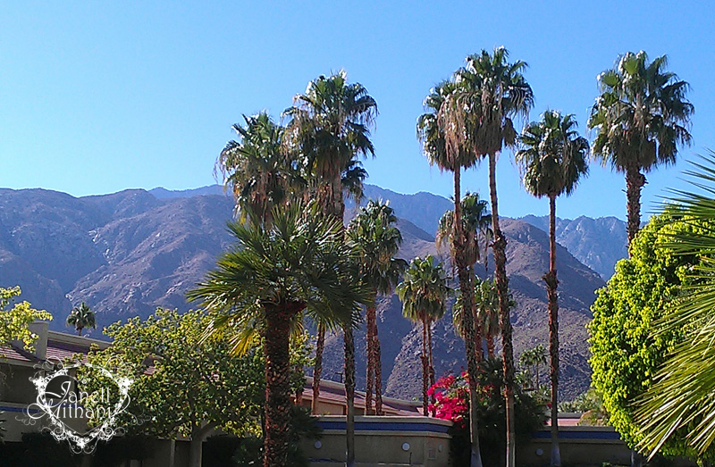 Photo of palm trees and mountains by Palm Springs by Janell Mithani