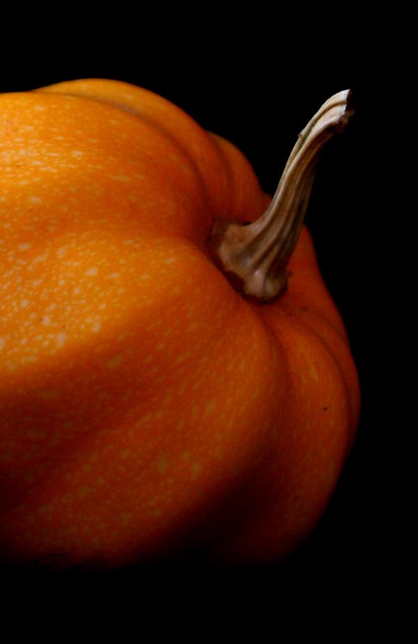 pumpkinstemfb