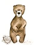 bear drawing by Janell MIthani