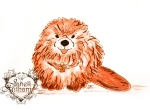 Beaver drawing by Janell Mithani