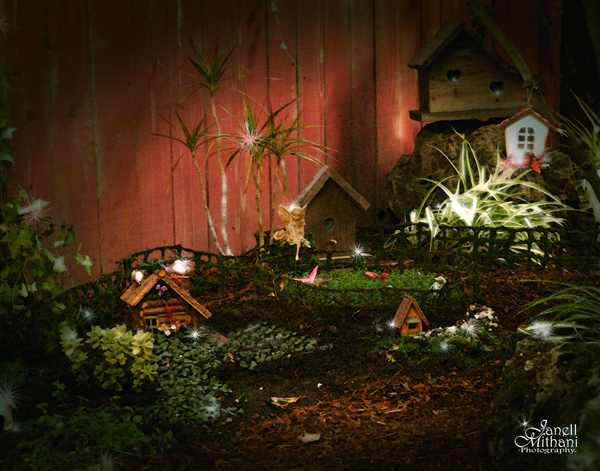 fairy garden photograph by janell mithani