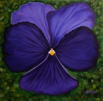 "Pansy, A Little GIrl's Favorite, Acrylic on canvas, 20"" x 20"""